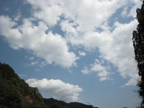 201046_042