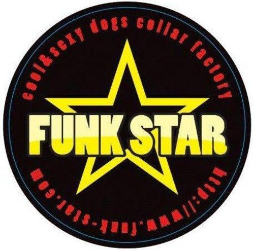 Funk_star_2